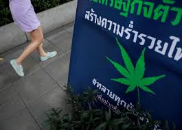"Thailand Plans To Upgrade Medical Cannabis To Status Of  ""Cconomic Crop"""
