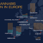 MEDICAL GROWERS PLANNING OVER 300 TONNES OF EUROPEAN-GROWN CANNABIS