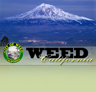 Cannabis company gets go-ahead for development in City of Weed