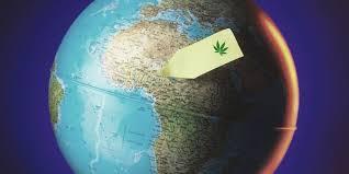 CannaAfrica: Cannabis & CBD Investment