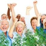 Medicinal Cannabis For Seniors- How To Start Safely