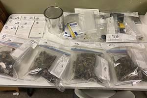 Canada: Surrey RCMP seize suspected 'magic mushrooms' during traffic stop
