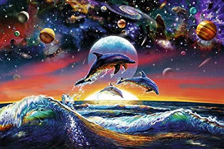 Article: Could Giving Acid to Dolphins Help Us Talk to Aliens?