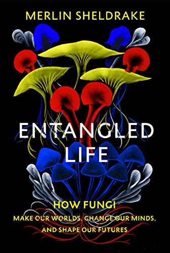 Book Review – Forget About Magic Mushrooms … Think Instead Of The Magic Of Mushrooms