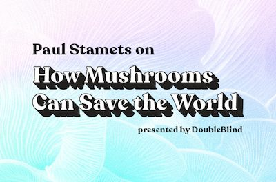 Webinar: How Mushrooms Can Save The World