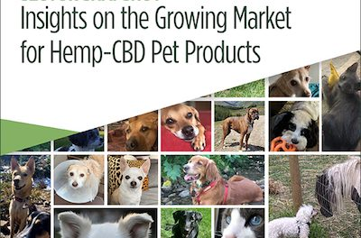 Insights On The  Growing Market For Hemp-CBD Pet Products