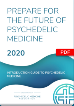 Association to Connect Practitioners with Psychedelics Launches