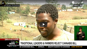 Video – South Africa: Cannabis farmers, traditional leaders reject the Private Use Cannabis bill in the Eastern Cape