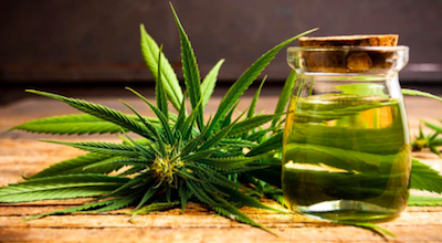 How cannabis is helpful to prevent diseases?