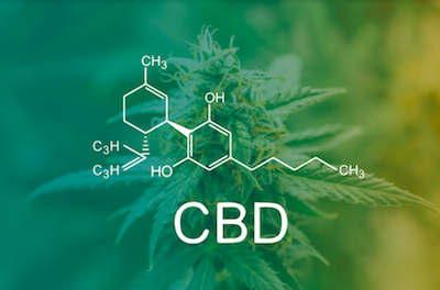 How To Use CBD Products For Weight Loss
