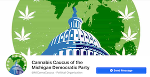 Cannabis Caucus Of Michigan's Democratic Party Releases List Of Candidate Endorsements