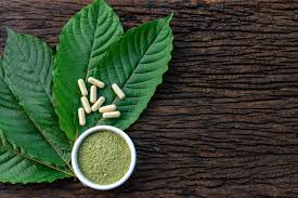 Sourcing Kratom From Vendors That Test to Stay Safe