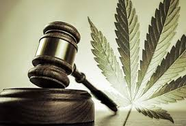 Legal Cannabis's Complicated World