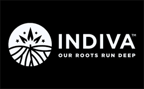 Digital Marketing Specialist Indiva – Toronto, ON