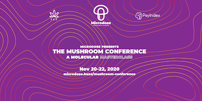 The Mushroom Conference: A Molecular Masterclass,