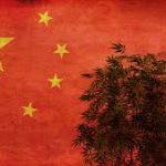 Hemp Today Article: China's CBD sector experiencing typical teething pains