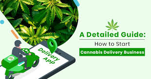 Trade Orgs File Lawsuit Vs Los Angeles and its Department of Cannabis Regulation Re Delivery Issues