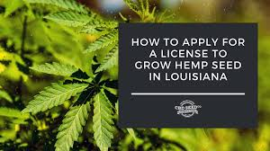 With Great Difficulty !! Louisiana's new industrial hemp sector off to a rough start, officials say