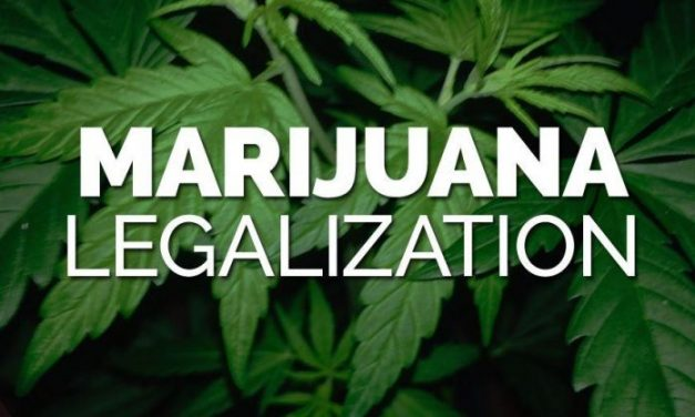 Ready To Do Your Homework? Industry Leaders Talk About Investing in the Cannabis Market After 2020 Elections