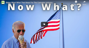 Biden Wins! What That Mean For The Cannabis Industry