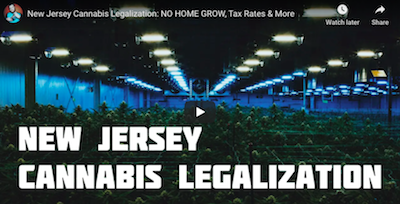 New Jersey Cannabis Legalization: NO HOME GROW, Tax Rates & More