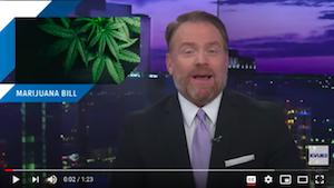 Newly-filed bill proposes legalizing marijuana in Texas   KVUE