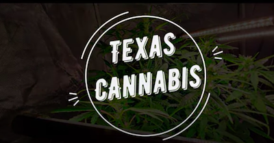 New Texas Laws For Cannabis!  Parts 1 & 2