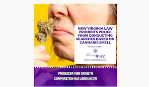 NEW VIRGINIA LAW PROHIBITS POLICE SEARCHES BASED ON CANNABIS SMELL | TRICHOMES
