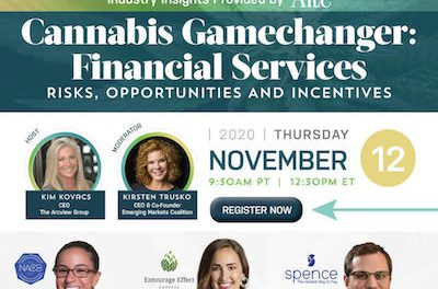 Arcview Access™ – CANNABIS GAMECHANGER: FINANCIAL SERVICES – Risks, Opportunities and Incentives