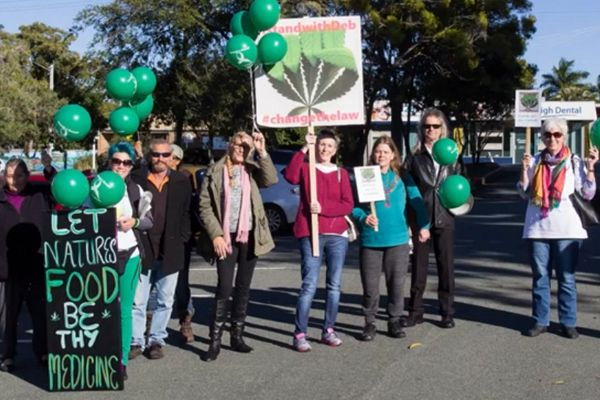 As Well As The NZ Election There Was Another Election This Weekend Testing Cannabis Support ,  In Qld Australia