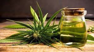 Medicinal Benefits of CBD Oil