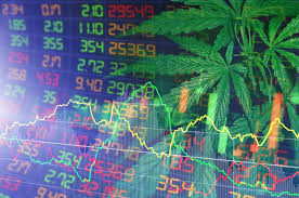 Why 2021 Could Be A Good Year for Cannabis Stocks?