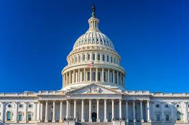 Hemp Industry Supporters Elected To Congress