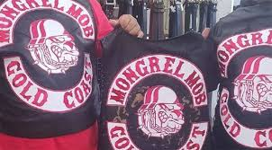 Police arrest and charge a member of the Mongrel Mob with drug offences in Far North Queensland.