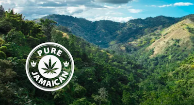 Pure Jamaican's Pharma Division Seven10 Nears Start of Exportation of Pharmaceutical Cannabis Ingredients to Mexico With Mexican Senate's Approval of Cannabis Legislation