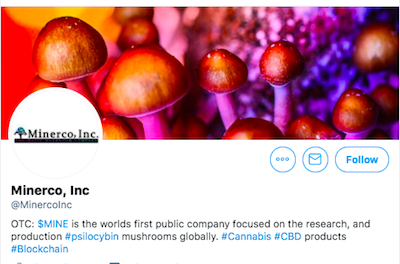 Press Release: Minerco Inc., The Magic Mushroom Company, Is Now in Advanced Discussions with CBD Manufacturing White Label Company WLCCO for a Potential Acquisition