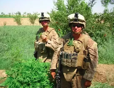 """US Congress Urges Caution To Military Re """"enforcing marijuana-related penalties against service members"""" as house approves defense spending bill"""