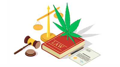 New Cannabis Laws Changing For Upcoming Legalizing States