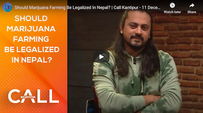 Should Marijuana Farming Be Legalized In Nepal?
