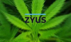 Senior Legal Counsel ZYUS – Saskatoon, SK