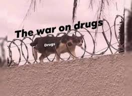 """Australia: Apparently NSW Police Are """" """"once again left astounded by the insatiable demand for prohibited drugs from those across our community"""""""