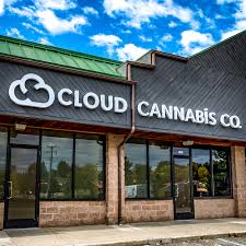 Director of Marketing Cloudcannabis – Warren, MI 48093
