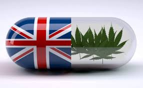 Article: (UK) Cannabis and the Law – No Evidence, No Crime? A 'Seed our Future Campaign' Report Oct 2020