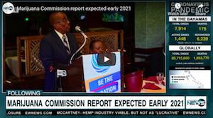 Eyewitness News Bahamas:  Marijuana Commission report expected early 2021