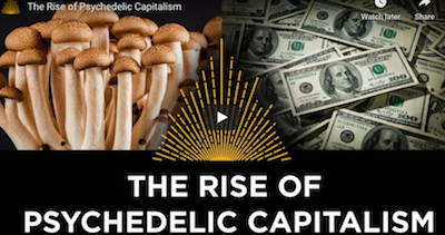 New Film: Premiered Jan 7, 2021 – The Rise of Psychedelic Capitalism