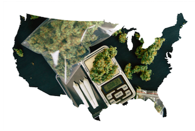 Understanding Legal Marijuana in Different Countries Laws and Regulations