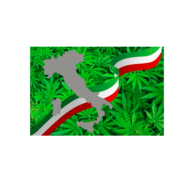 Article: Italy's cannabis industry could rival the legal market in the US