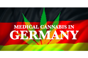 New developments in the German medical cannabis and cannabidiol (CBD) market 2021 –  an overview