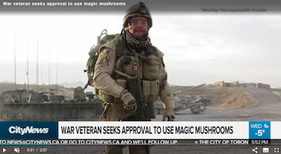 Canadian veteran seeks approval to use magic mushrooms