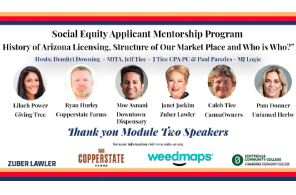 Free Social Equity Mentorship Program Offered By MITA